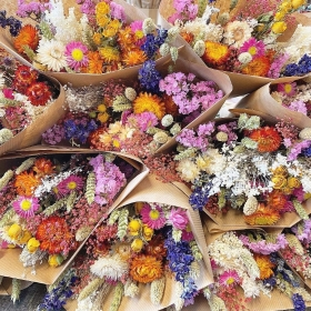 Mixed Dried Flowers